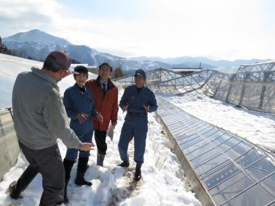 大雪被害を調査する党県議団