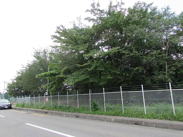 入間市向陽台の留保地。左端の車の向こうは小学校と中学校が並ぶ。